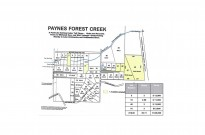 Paynes Forest Creek