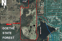 350 Lakefront Acres – Lake Bonable